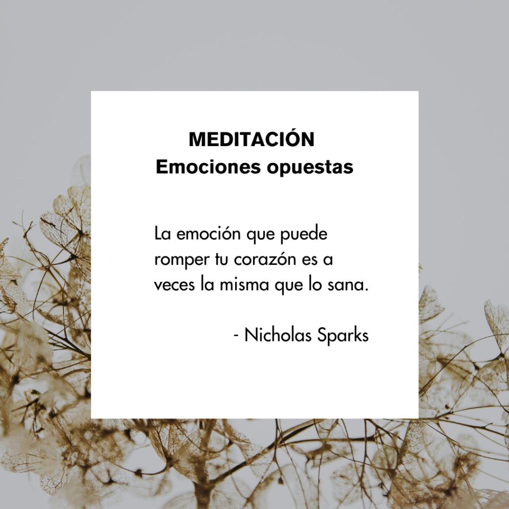 la emocion que puede romper tu corazon es a veces la misma que lo sana nicholas sparks cita emociones